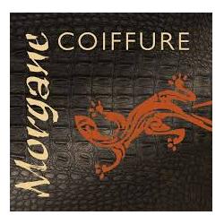MORGANE COIFFURE - VILLEFRANCHE