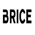 MAGASIN BRICE VILLEFRANCHE/SAONE