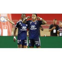 Olympique Lyonnais/FC NANTES virage supérieur
