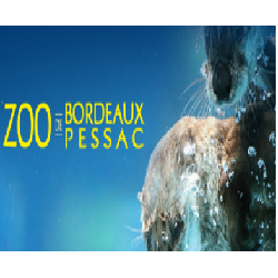 ZOO DE BORDEAUX PESSAC - ADULTE