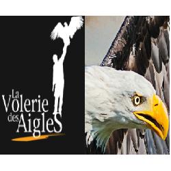 LA VOLERIE DES AIGLES - ALSACE - ADULTE