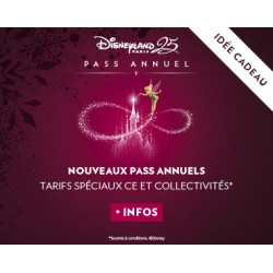 DISNEYLAND : PASSEPORT ANNUEL DISCOVERY